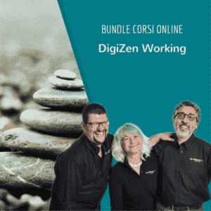 DigiZen Working